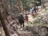 tabor2007-475