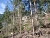 tabor2007-476